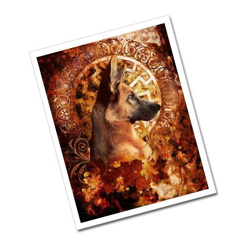 Greeting Card Postcard Black Sun - The Loyalty